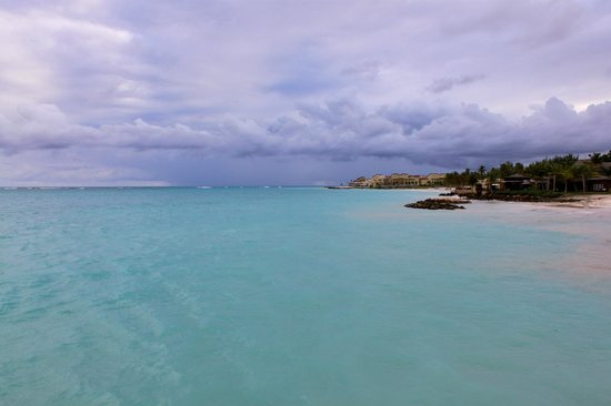 Sanctuary Cap Cana by Playa Hotels & Resorts:                   View of the ocean from Blue Marlin restaurant