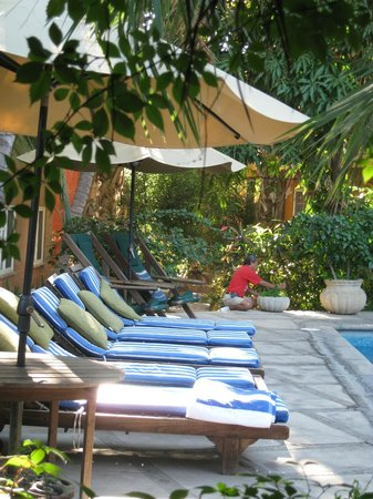 The Bungalows Hotel:                   By the Pool