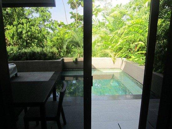 Capella Singapore: Private pool