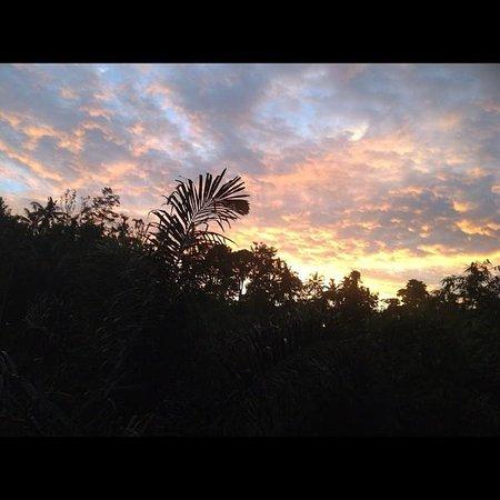 Santa Mandala Artist Homestay:                   Sunset