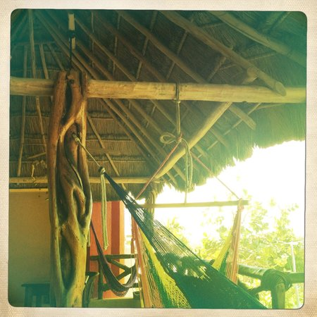 Casa Flamboyan:                   nest of hammocks front patio