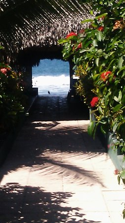 Hotel Honolulu:                                                       access to the beach