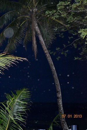 Wellesley Resort Fiji:                   Night time at the beach