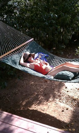 Eaglenest Bed and Breakfast:                   A nap in the hammock