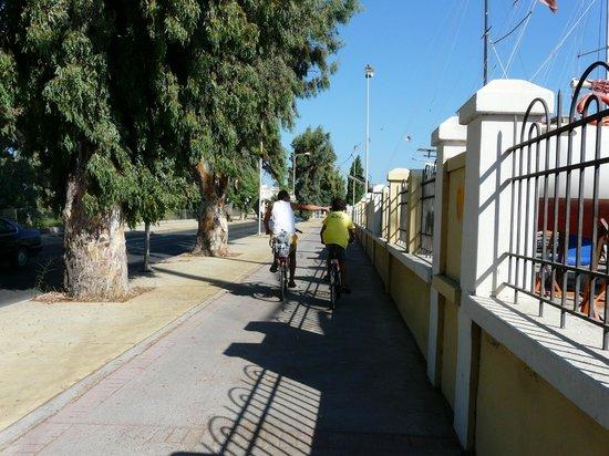 Michalis Studios & Apartments:                                     En route à vélo, près de la Marina, Kos
