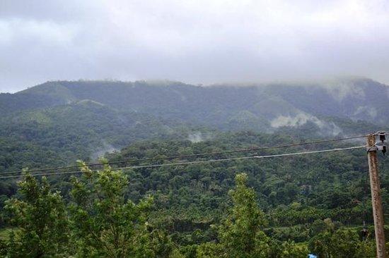 Tamarind Thirunelly:                   The Brahmagiri Mountains