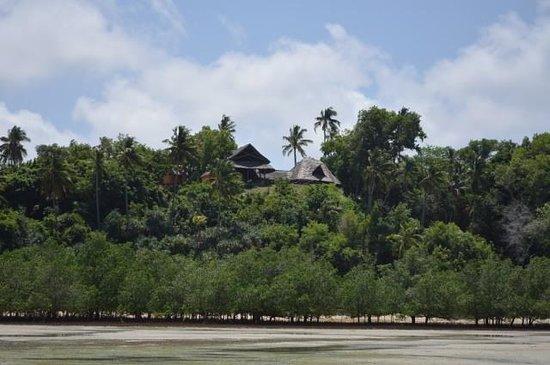 Whale Shark Lodge:                   Vom Meer aus bei Ebbe