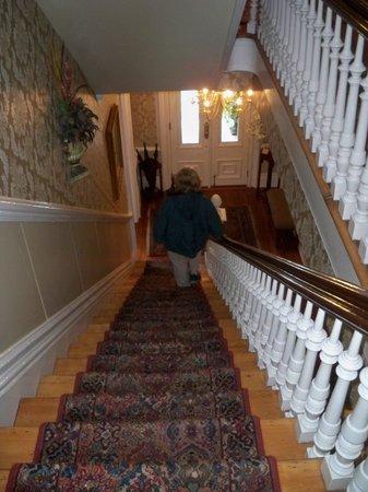 Hamilton-Turner House:                                     Stairwell