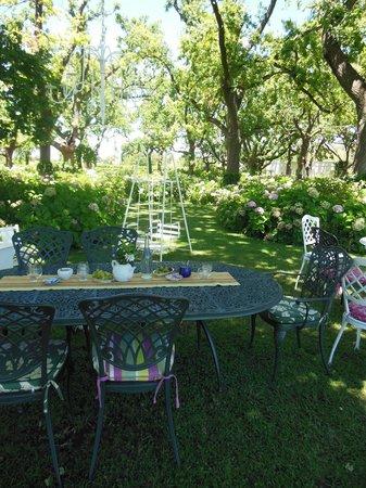 Tea under the Trees:                   Child friendly