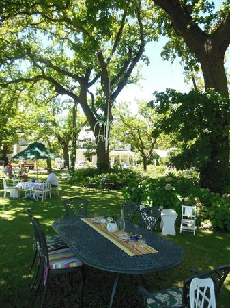 Tea under the Trees:                   Table settings