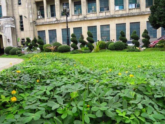Πανεπιστήμιο Santo Tomas: Garden