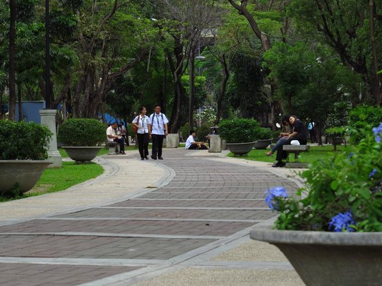 Universidad de Santo Tomás: Path