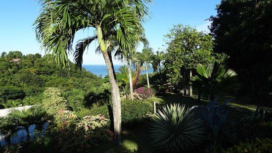La Koumbala:                   Vue depuis la piscine