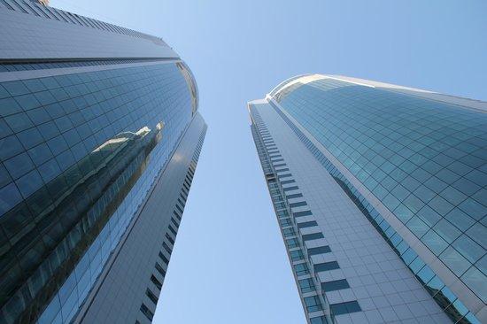 فندق اوسيس بيتش تاور:                   the towers                 