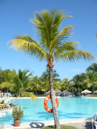 Paradisus Rio de Oro Resort & Spa:                   View from our sun lounger