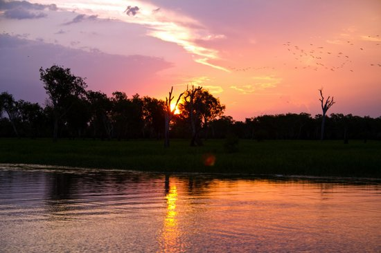 Yellow Water Cruises: Sunset on Yellow Waters