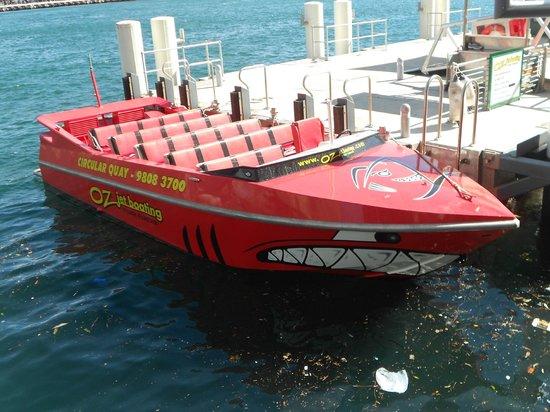 Oz Jet Boating Sydney Harbour:                   The Mako