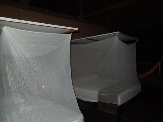 Posada Amazonas :                   Nets at night