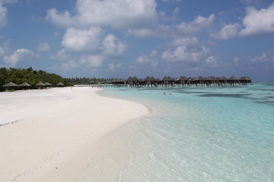 Olhuveli Beach & Spa Maldives:                   пляж