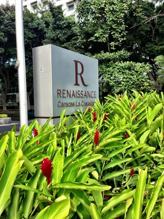 Renaissance Caracas La Castellana Hotel: You've arrived!