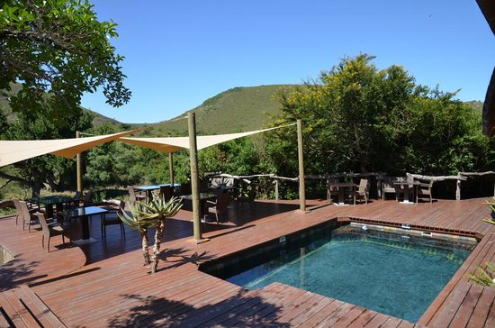 Shamwari Game Reserve Lodges: piscine