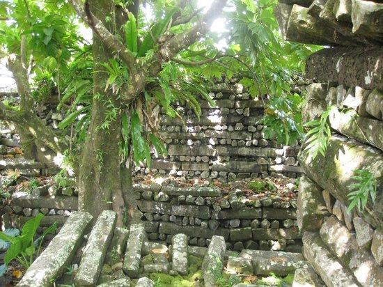 Inside Nan Madol