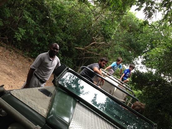 Wilderness Safaris Rocktail Camp:                                                                                           trips