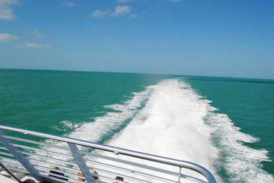 Key West Express: View off the back