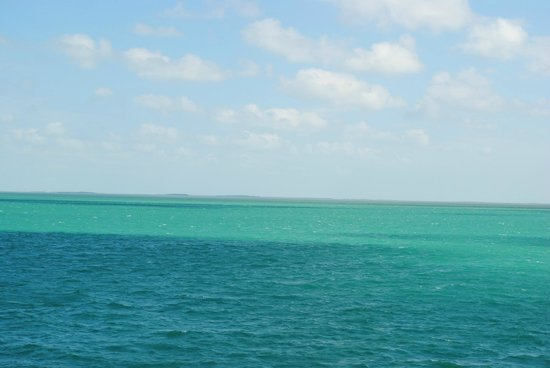 Key West Express照片