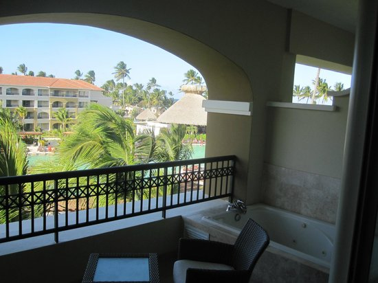 Now Larimar Punta Cana:                   Over looking our balcony