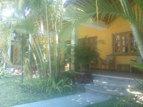 Hotel Dos Mundos:                   Nuestra habitación desde el jardín