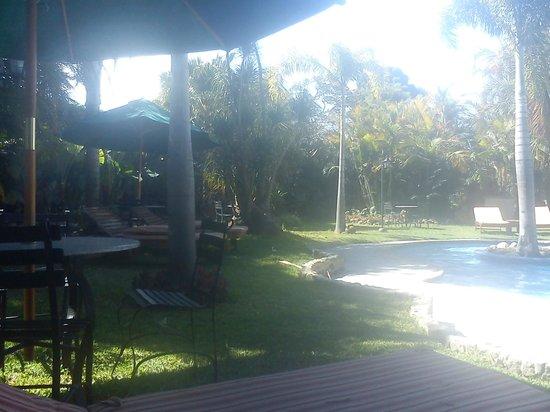 Hotel Dos Mundos:                   Area de jardín