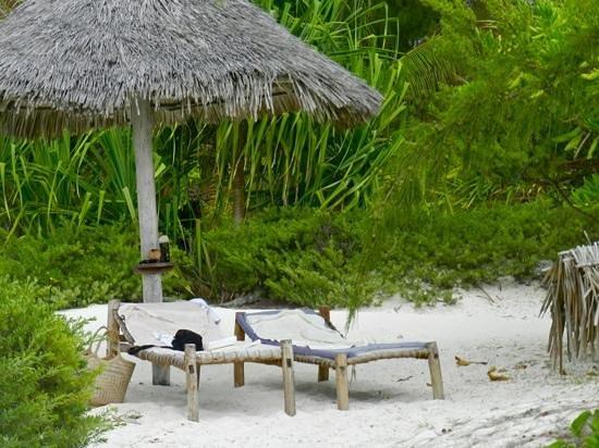 Hakuna Majiwe Beach Lodge: meglio di così.. non si può!