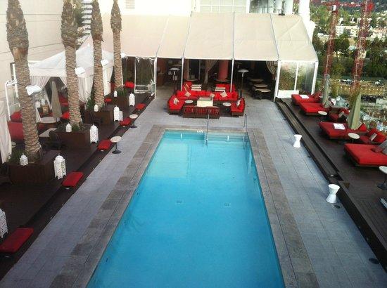 دبليو هوليود: Swimming Pool