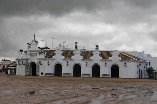 La Virgen del Rocío:                   Edificios de El Rocío