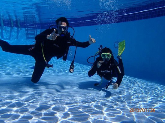 Private Scuba Lessons:                   Pool Training