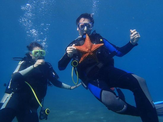 Private Scuba Lessons:                   In the Ocean
