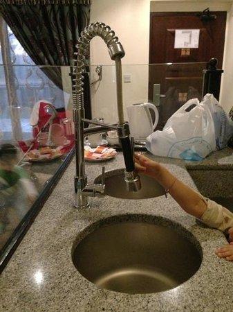 Emirates Park Resort: kitchen