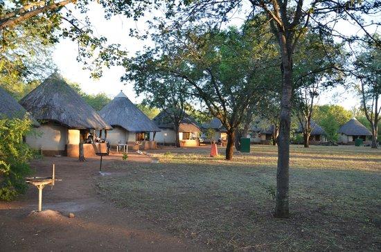 Satara Rest Camp: Im Ring angeordnete Hütten