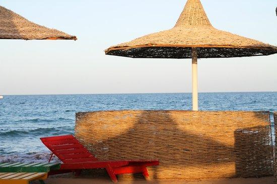 Ali Baba Palace:                   Пляж.