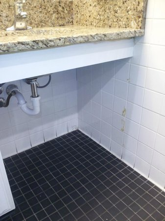 Springmaid Beach Resort & Conference Center:                   Nice and clean tile - check out the grout job!