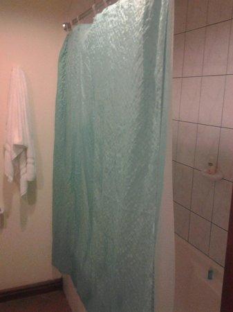 Hotel Parador: la cortina del baño, de la casa del terror