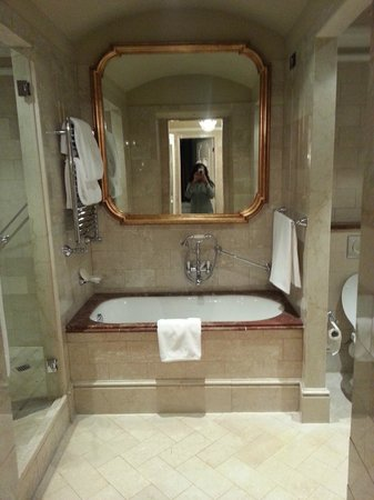 The St. Regis Rome:                   Awesome bath tub