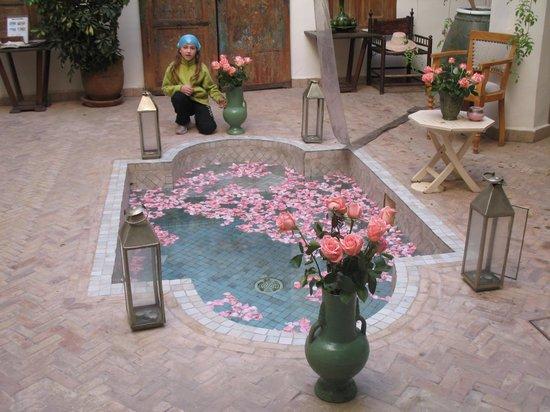 Riad Le Coq Fou:                   la piscina
