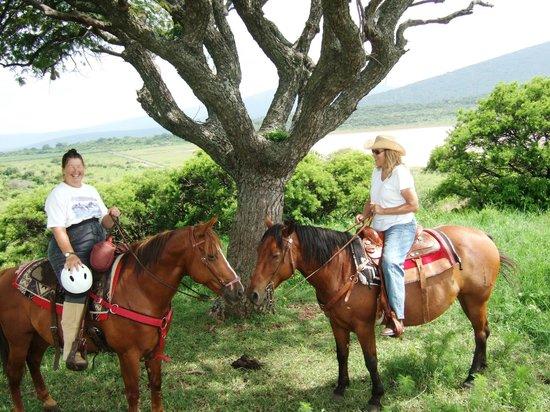 Hacienda de Taos : rides