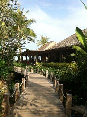 Deva Samui Resort & Spa:                   garden                 