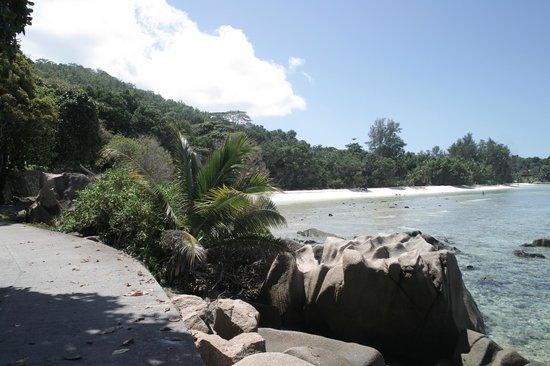 Chalets d'Anse Reunion:                   Traumstrände