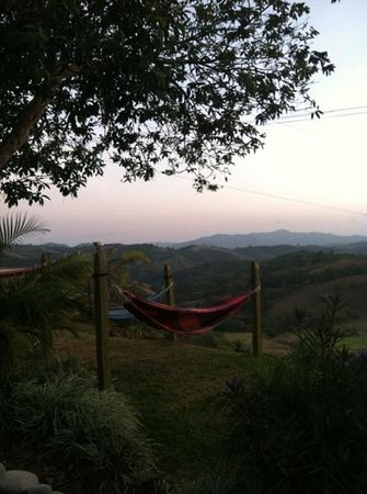 Angel Valley Bed and Breakfast:                   view from the patio