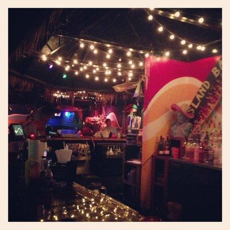 Gilligan's Island Bar and Grill: Bar Scene