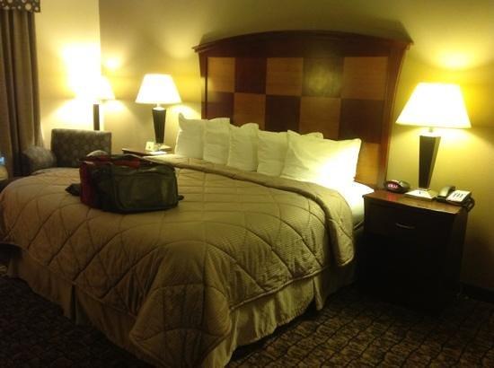 Comfort Inn & Suites : room 111 on back